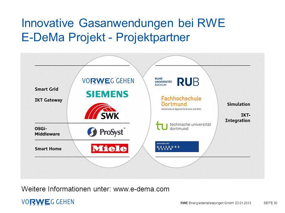 Innovative Gasanwendungen bei RWE E-DeMa Projekt - Projektpartner