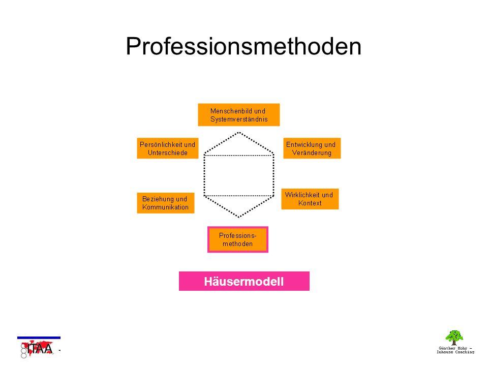Professionsmethoden Häusermodell