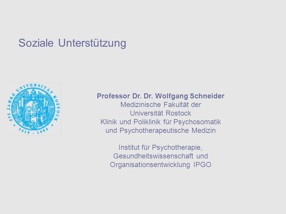Professor Dr. Dr. Wolfgang Schneider