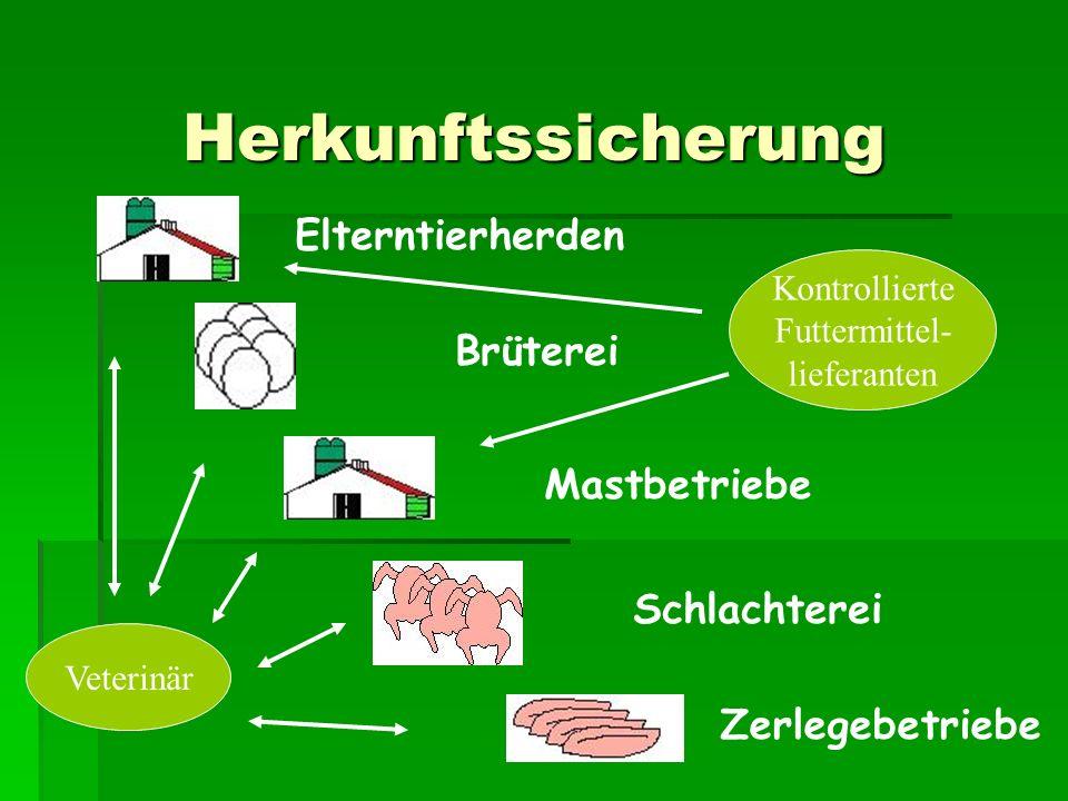 Herkunftssicherung Elterntierherden Brüterei Mastbetriebe Schlachterei