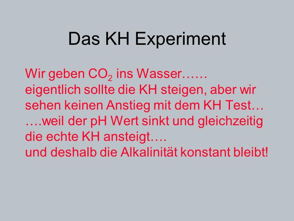 Das KH Experiment Wir geben CO2 ins Wasser……