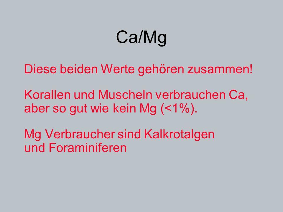 Ca/Mg Diese beiden Werte gehören zusammen!