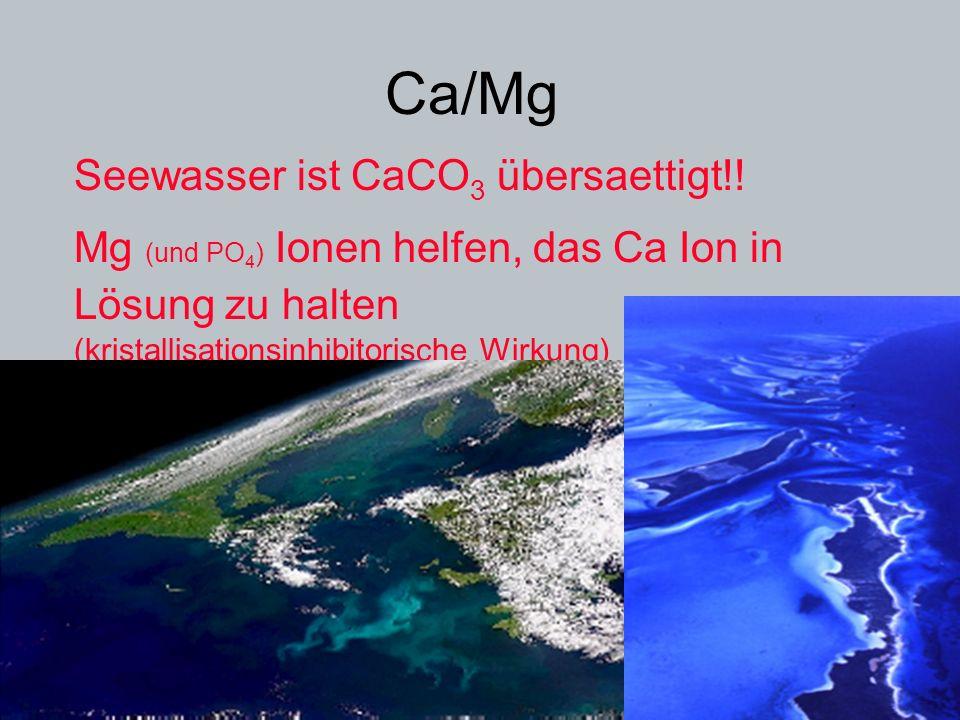 Ca/Mg Seewasser ist CaCO3 übersaettigt!!