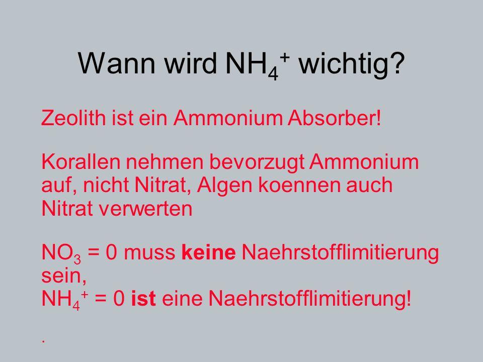 Wann wird NH4+ wichtig Zeolith ist ein Ammonium Absorber!