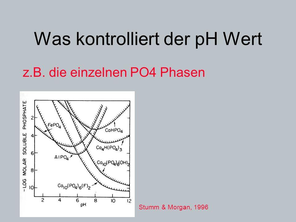 Was kontrolliert der pH Wert