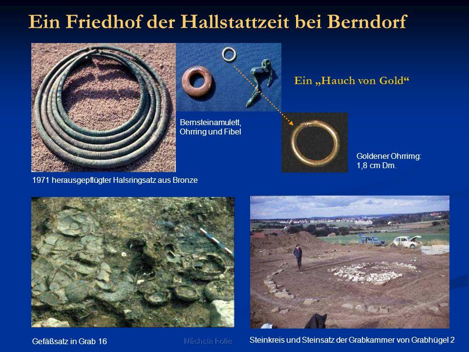 Ein Friedhof der Hallstattzeit bei Berndorf