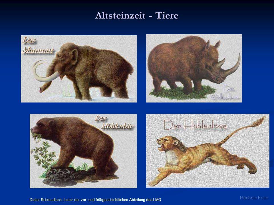 Altsteinzeit - Tiere Nächste Folie