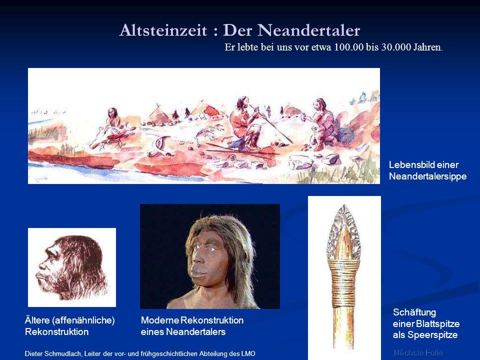 Altsteinzeit : Der Neandertaler