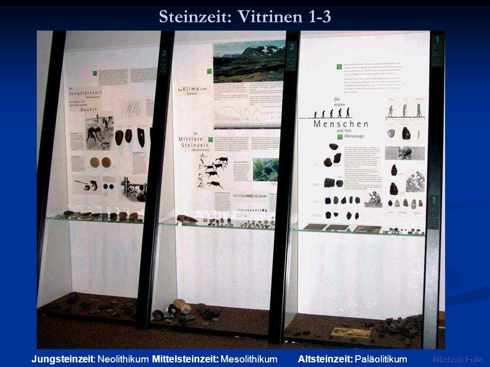 Steinzeit: Vitrinen 1-3 Jungsteinzeit: Neolithikum