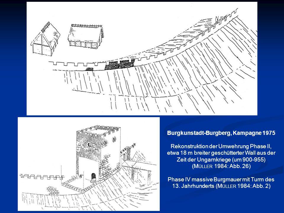 Burgkunstadt-Burgberg, Kampagne 1975
