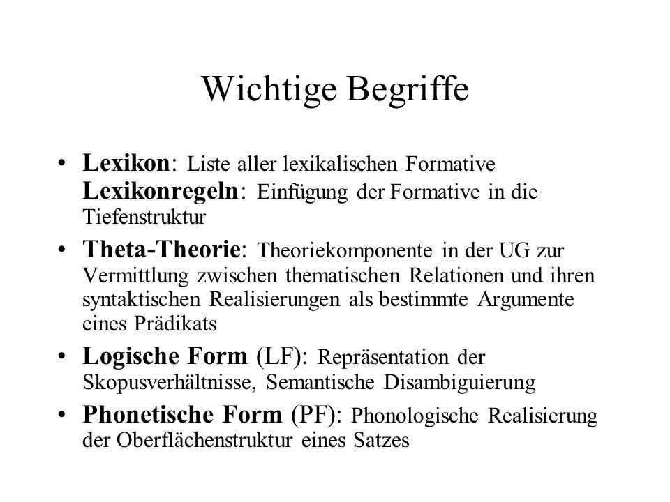 Wichtige Begriffe Lexikon: Liste aller lexikalischen Formative Lexikonregeln: Einfügung der Formative in die Tiefenstruktur.