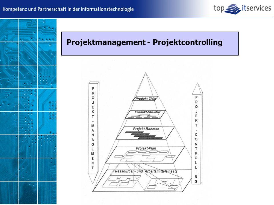 Projektmanagement - Projektcontrolling
