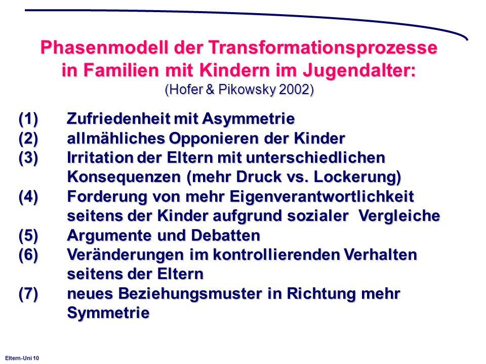 Phasenmodell der Transformationsprozesse