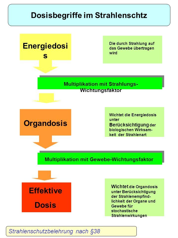 Dosisbegriffe im Strahlenschtz Energiedosis Organdosis Effektive Dosis