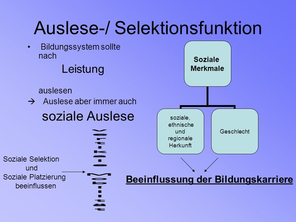 Auslese-/ Selektionsfunktion