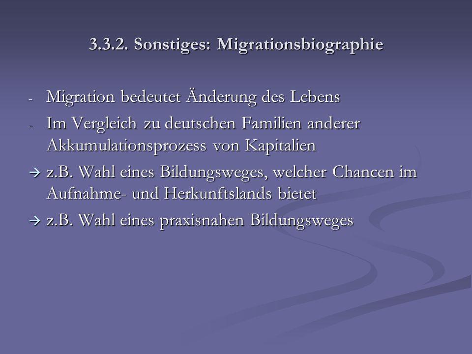 3.3.2. Sonstiges: Migrationsbiographie