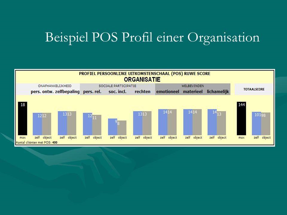 Beispiel POS Profil einer Organisation