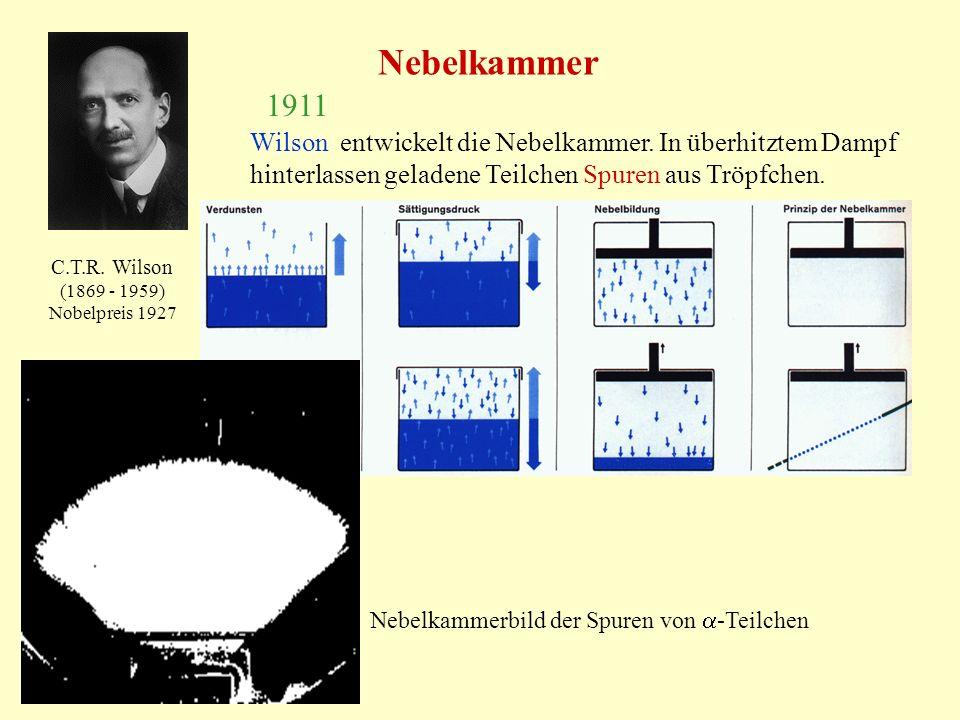 Nebelkammer 1911. Wilson entwickelt die Nebelkammer. In überhitztem Dampf hinterlassen geladene Teilchen Spuren aus Tröpfchen.