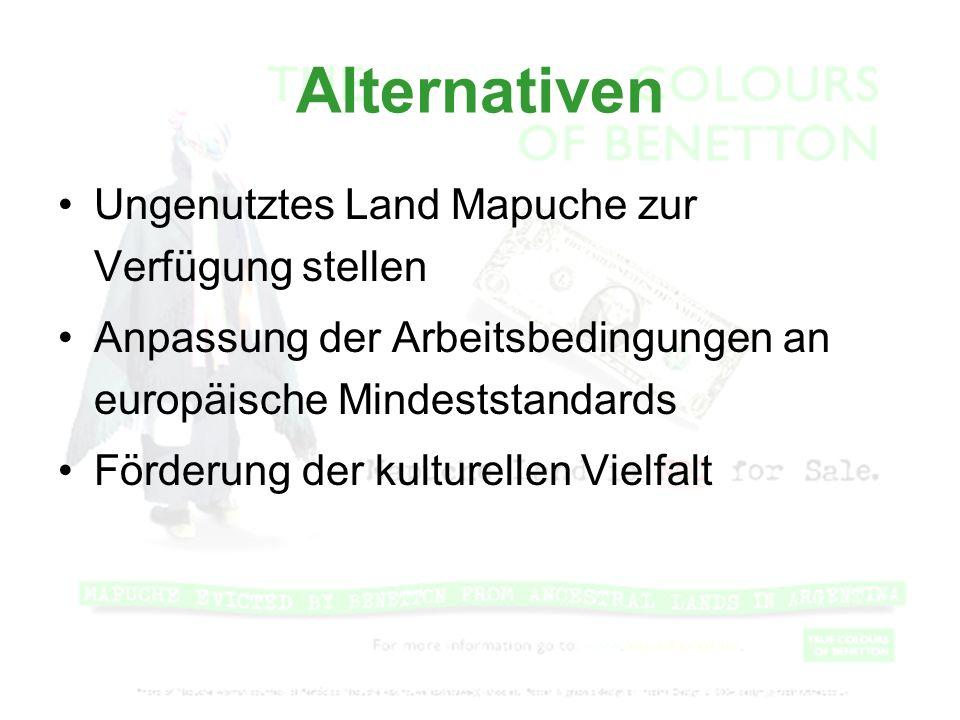 Alternativen Ungenutztes Land Mapuche zur Verfügung stellen