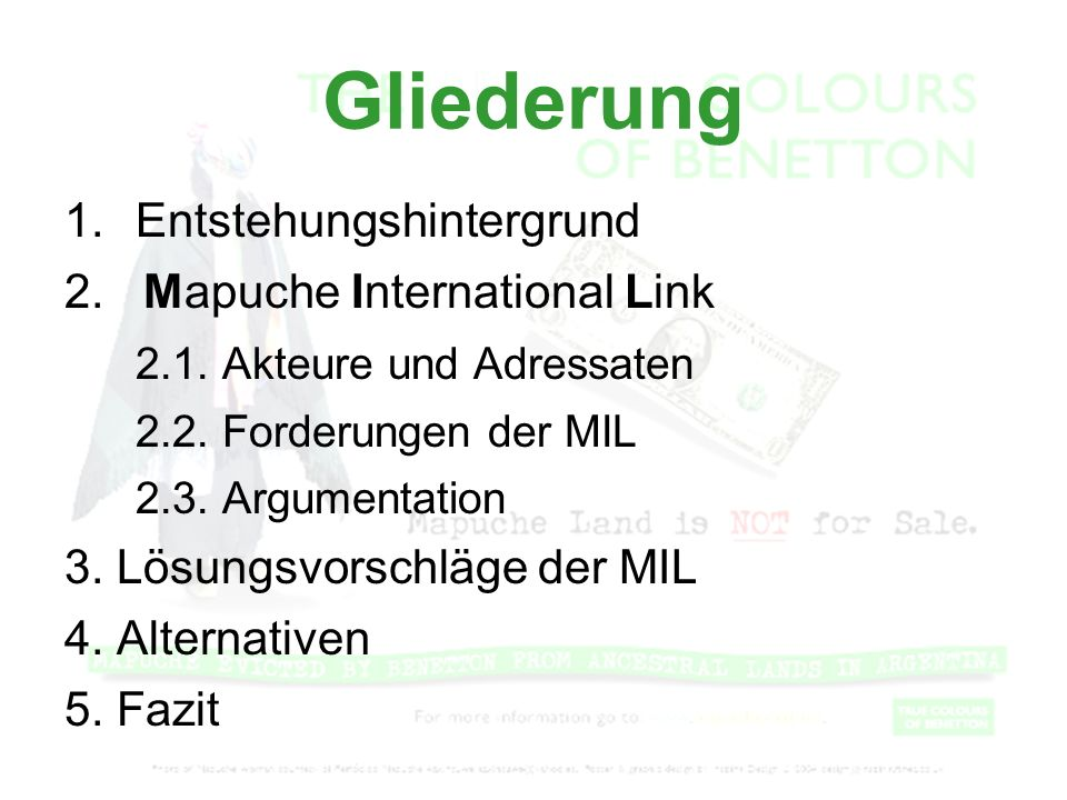 Gliederung 1. Entstehungshintergrund 2. Mapuche International Link