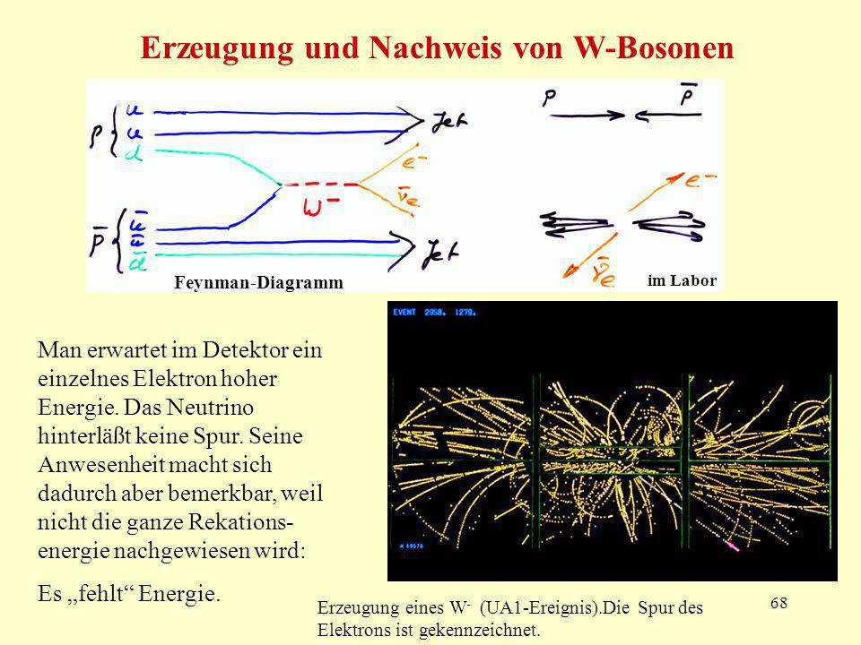 Erzeugung und Nachweis von W-Bosonen