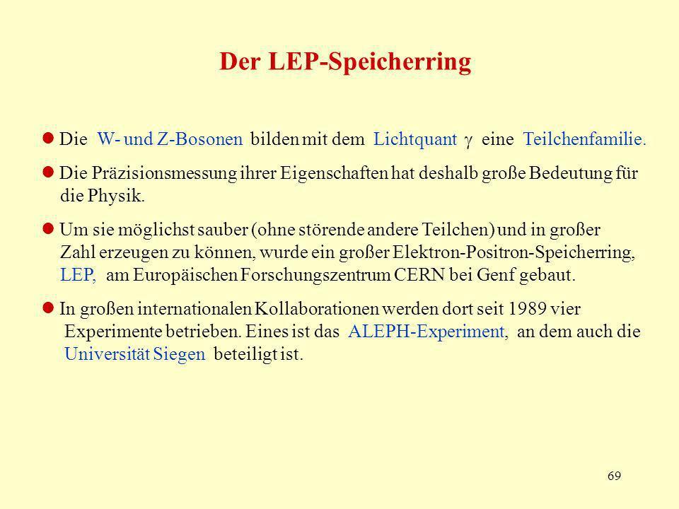 Der LEP-Speicherring  Die W- und Z-Bosonen bilden mit dem Lichtquant  eine Teilchenfamilie.