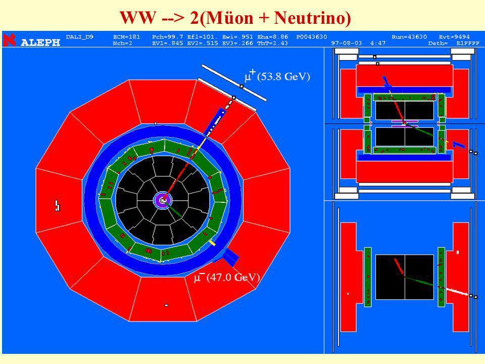 WW --> 2(Müon + Neutrino)