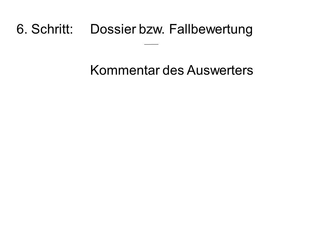 6. Schritt: Dossier bzw. Fallbewertung