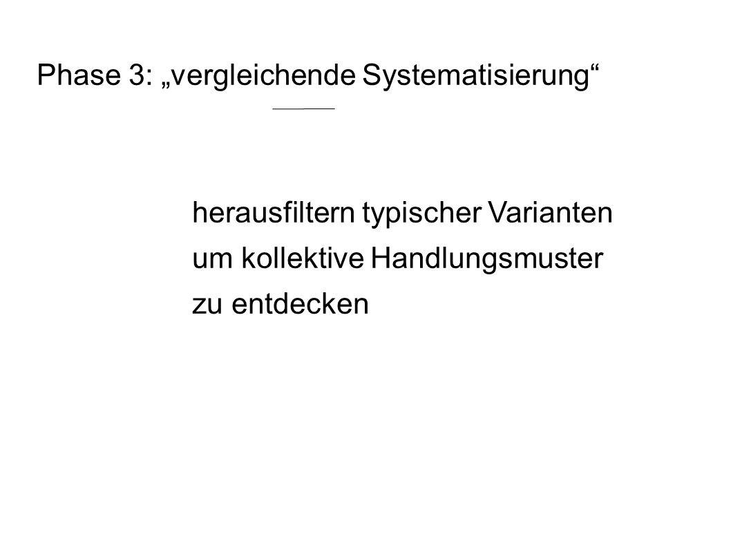 """Phase 3: """"vergleichende Systematisierung"""