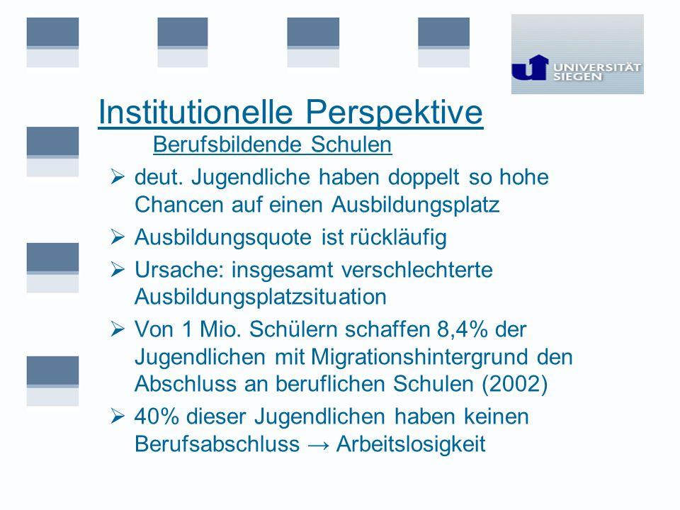 Institutionelle Perspektive