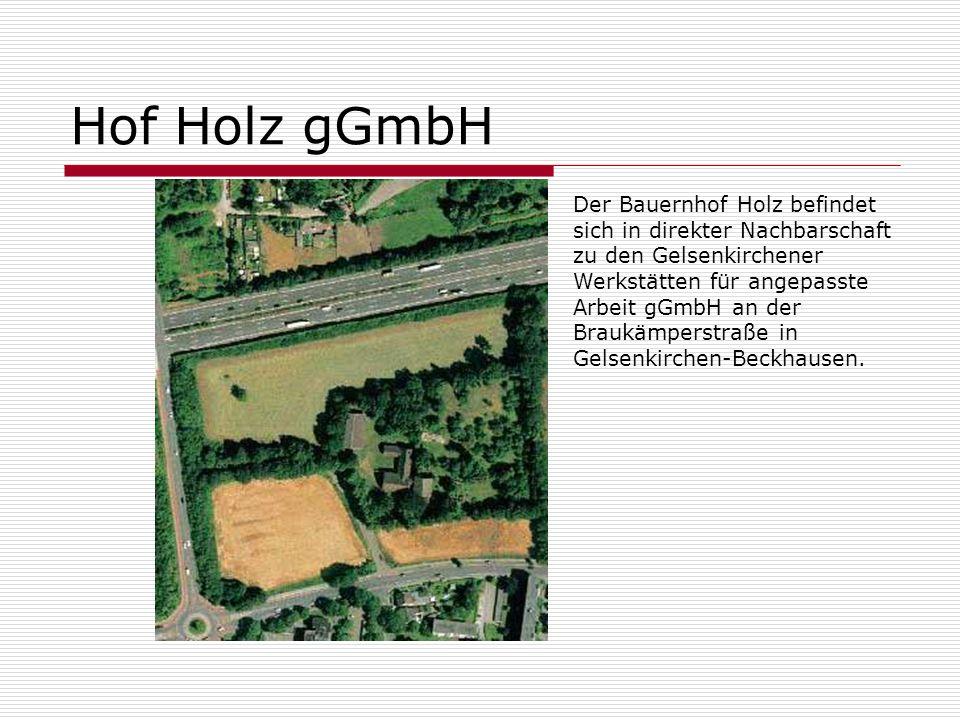 Hof Holz gGmbH