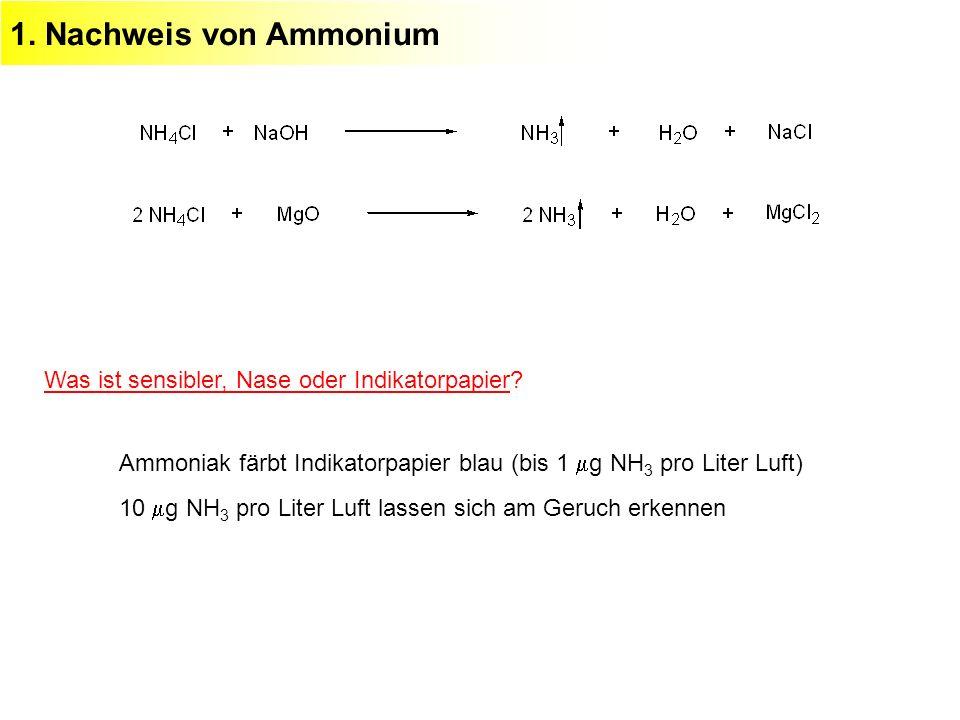 1. Nachweis von Ammonium Was ist sensibler, Nase oder Indikatorpapier