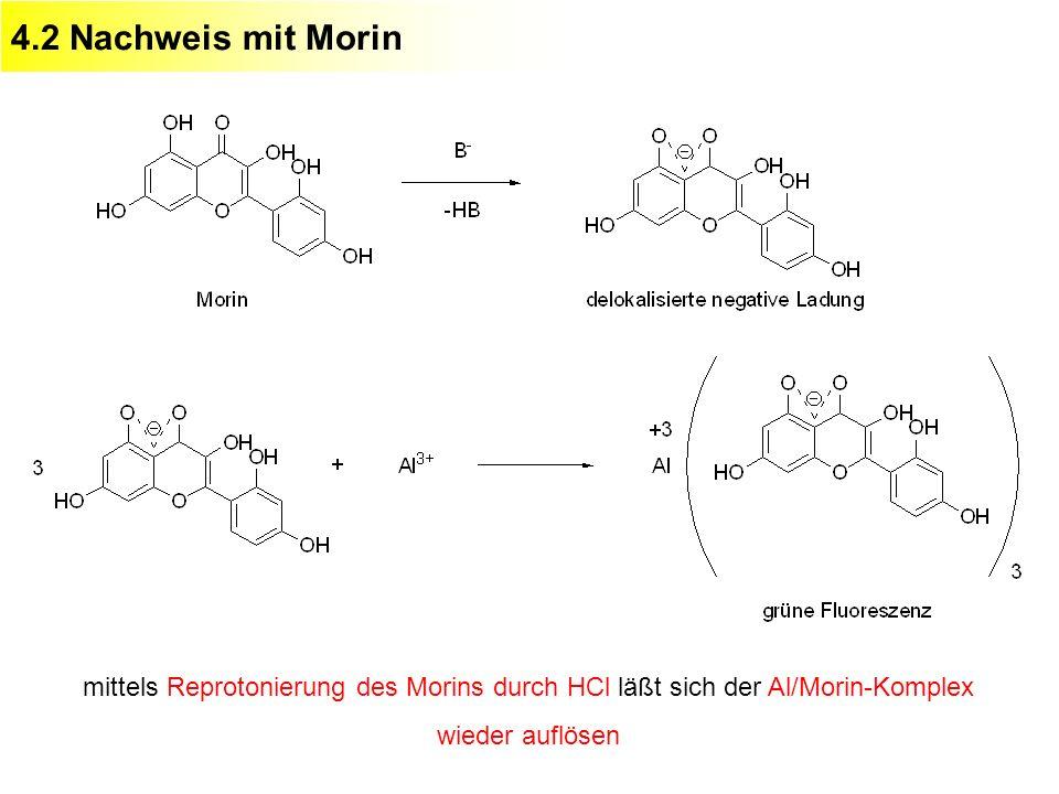 4.2 Nachweis mit Morin mittels Reprotonierung des Morins durch HCl läßt sich der Al/Morin-Komplex wieder auflösen.
