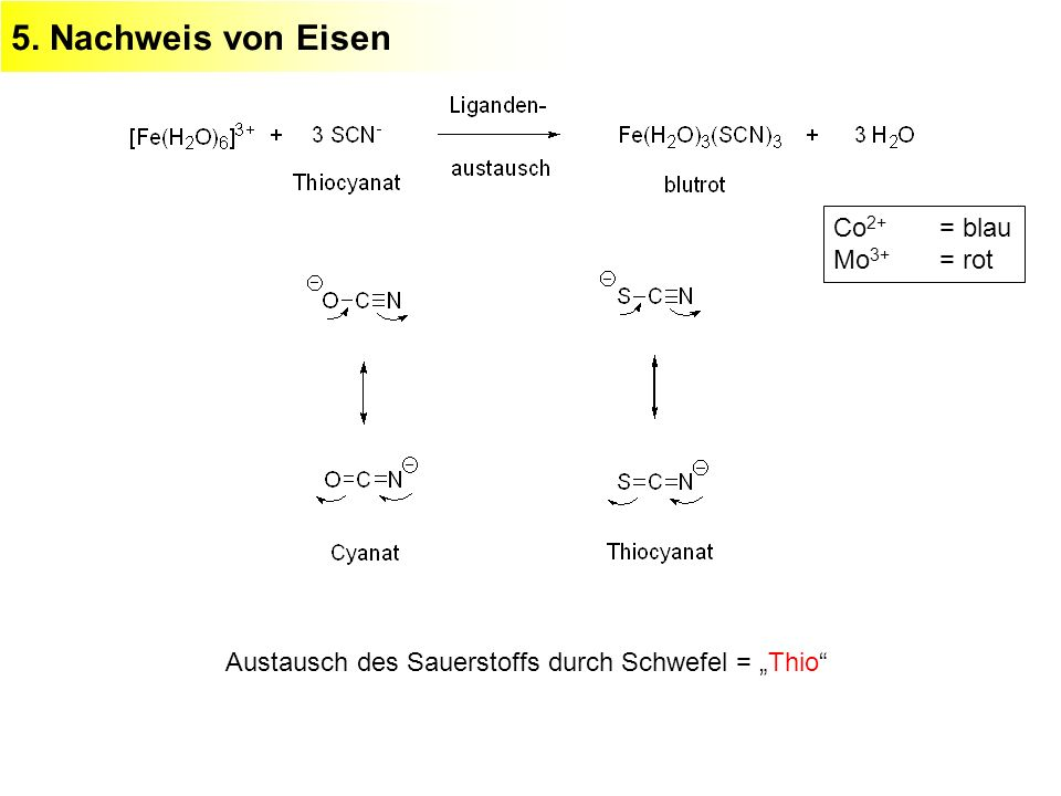5. Nachweis von Eisen Co2+ = blau Mo3+ = rot