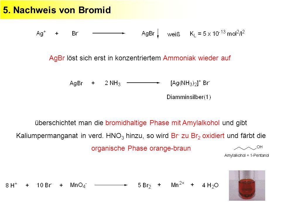 5. Nachweis von Bromid AgBr löst sich erst in konzentriertem Ammoniak wieder auf.