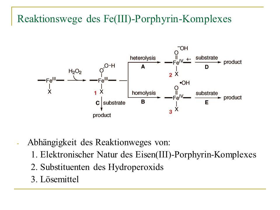 Reaktionswege des Fe(III)-Porphyrin-Komplexes
