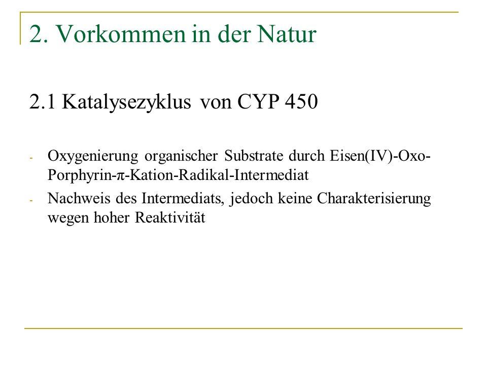 2. Vorkommen in der Natur 2.1 Katalysezyklus von CYP 450