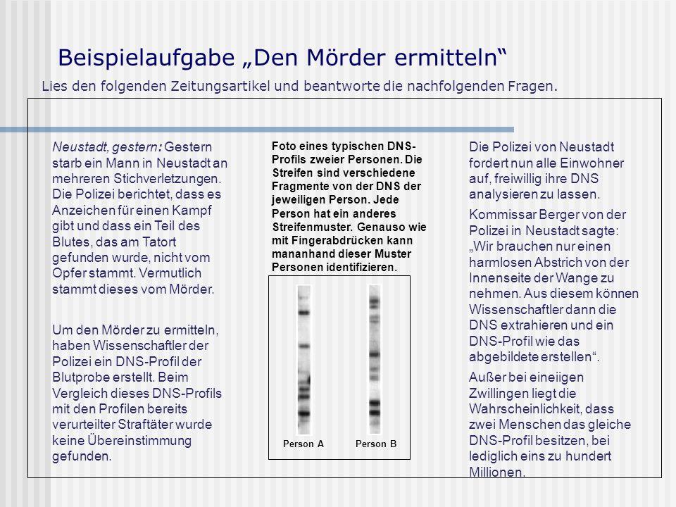 """Beispielaufgabe """"Den Mörder ermitteln"""