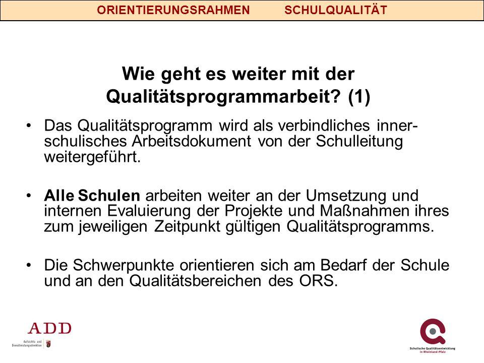 Wie geht es weiter mit der Qualitätsprogrammarbeit (1)