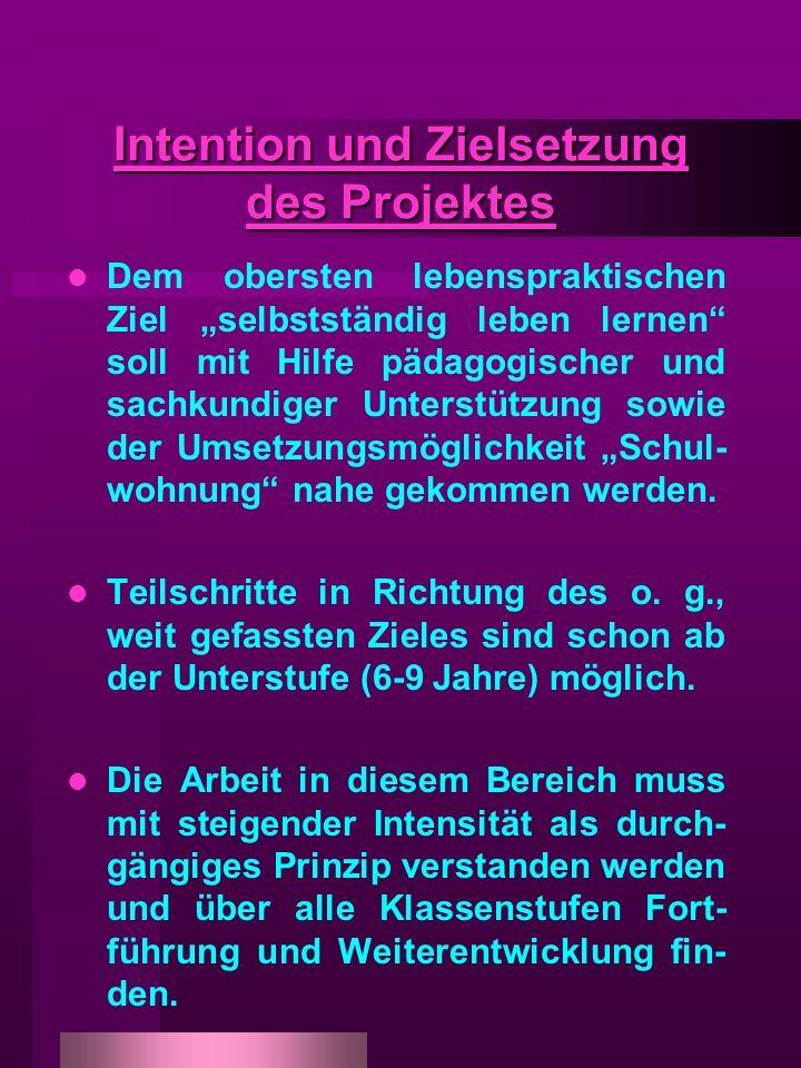 Intention und Zielsetzung des Projektes