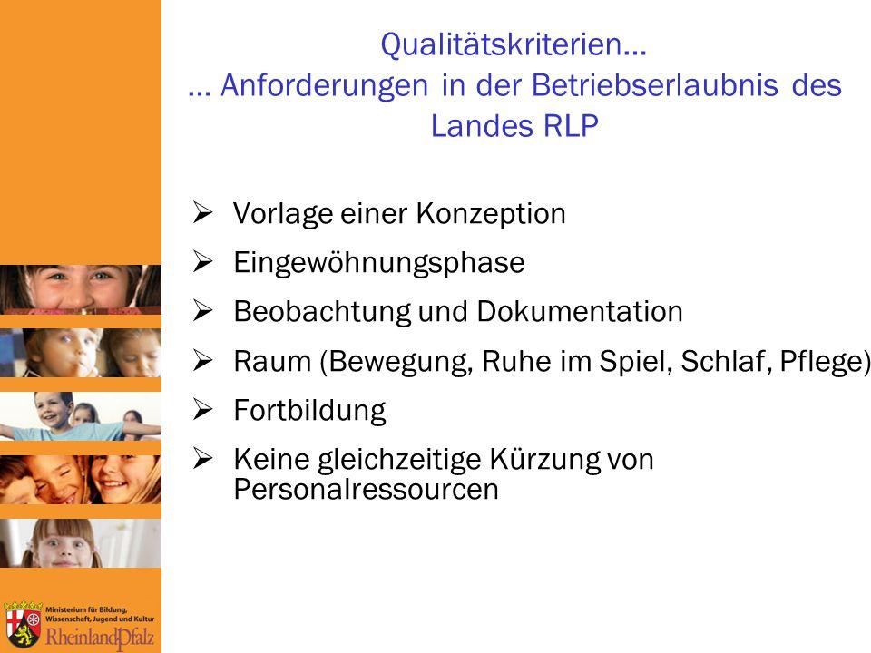 Qualitätskriterien… … Anforderungen in der Betriebserlaubnis des Landes RLP