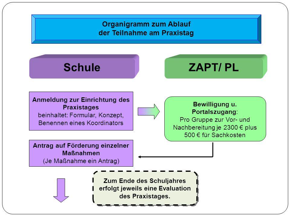 Schule ZAPT/ PL Organigramm zum Ablauf der Teilnahme am Praxistag