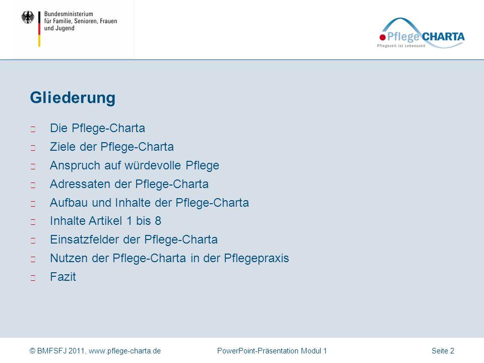 Gliederung Die Pflege-Charta Ziele der Pflege-Charta