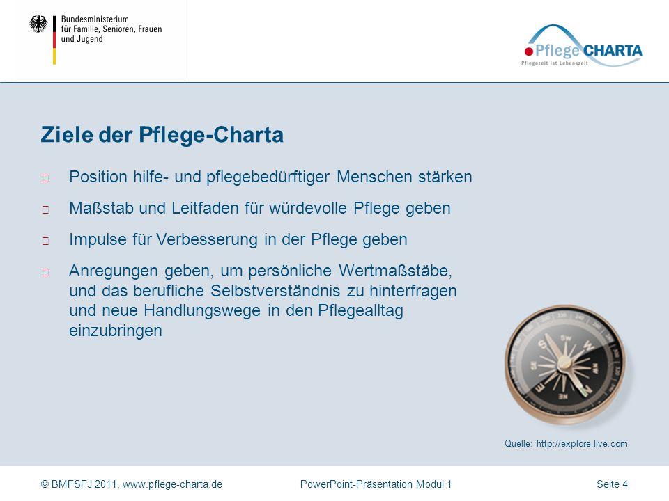 Ziele der Pflege-Charta