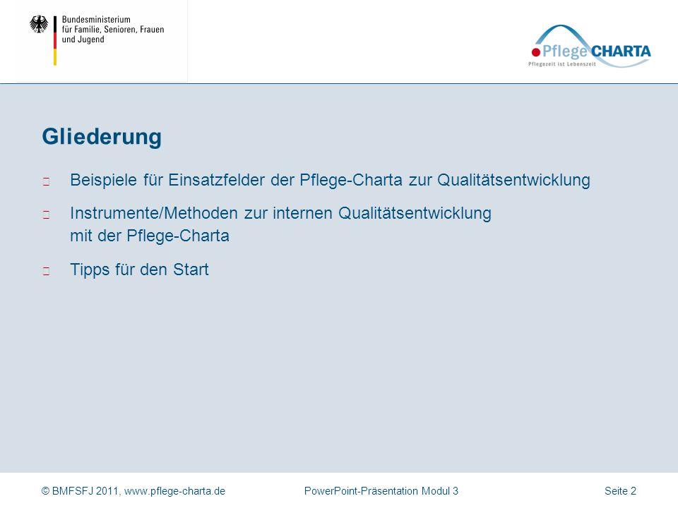 Gliederung Beispiele für Einsatzfelder der Pflege-Charta zur Qualitätsentwicklung.