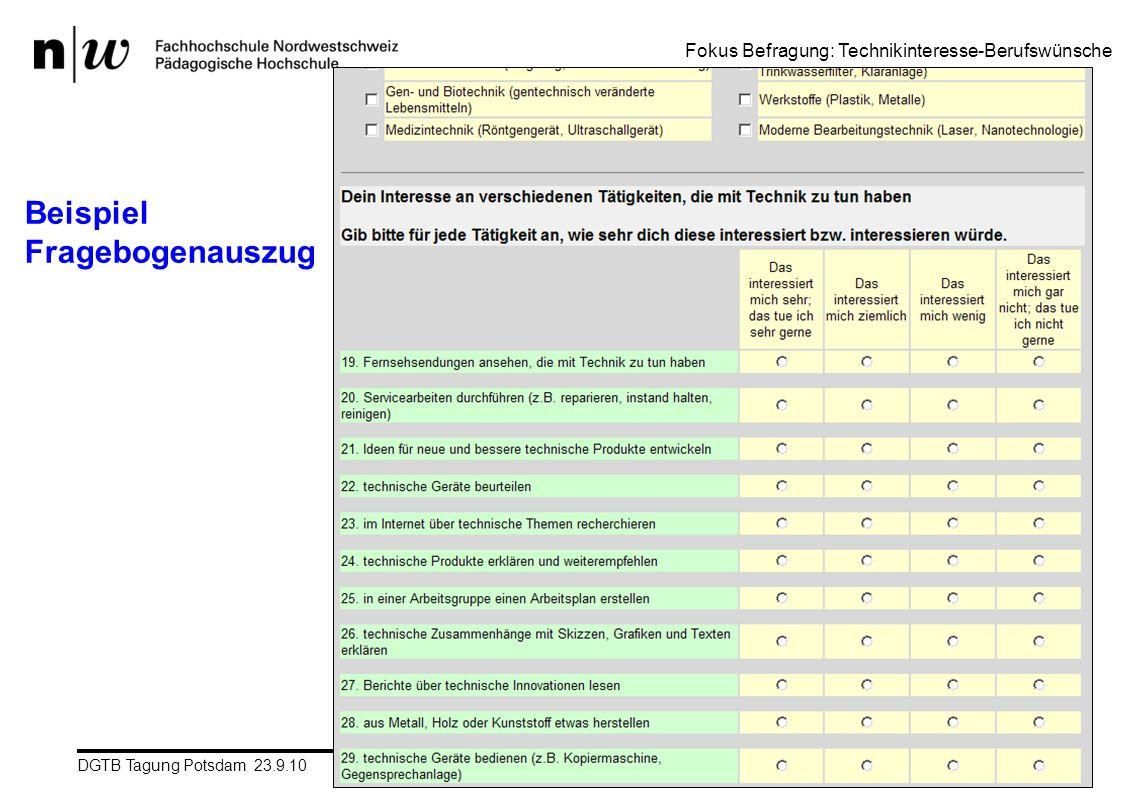 Beispiel Fragebogenauszug