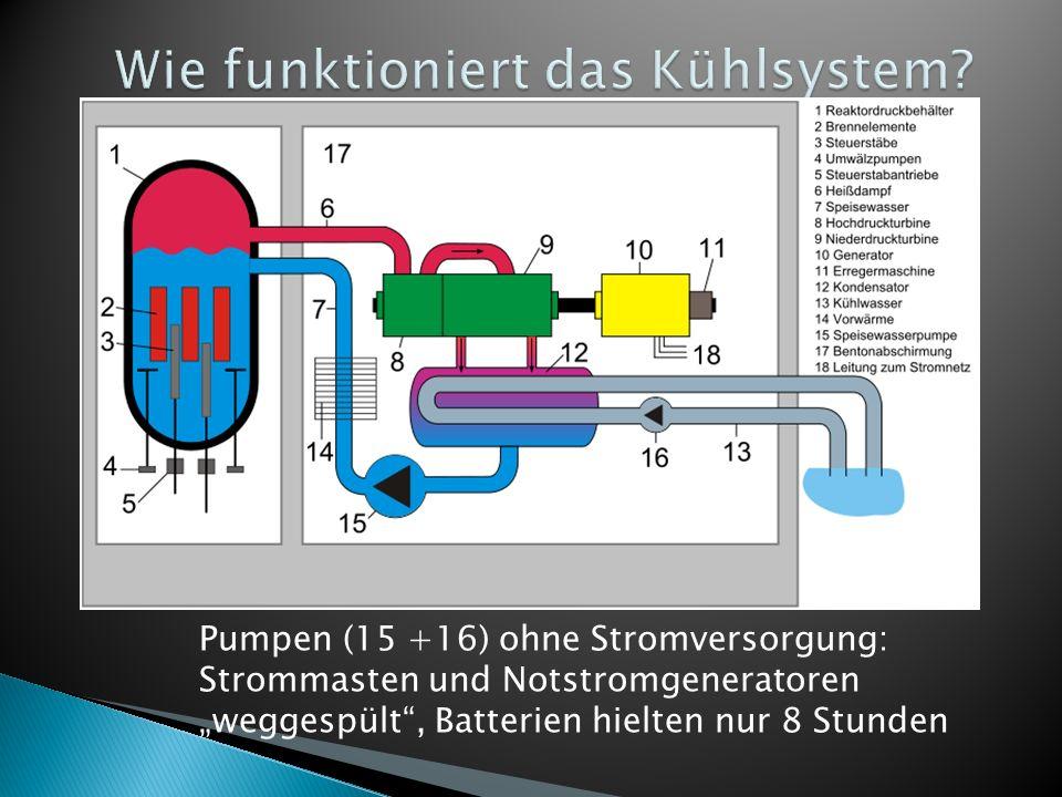 Wie funktioniert das Kühlsystem