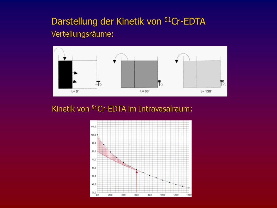 Darstellung der Kinetik von 51Cr-EDTA