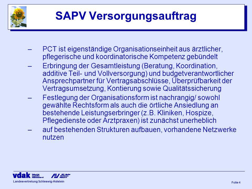 SAPV Versorgungsauftrag