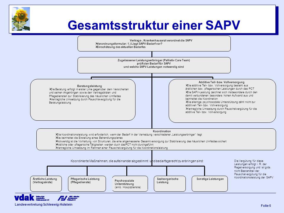 Gesamtsstruktur einer SAPV